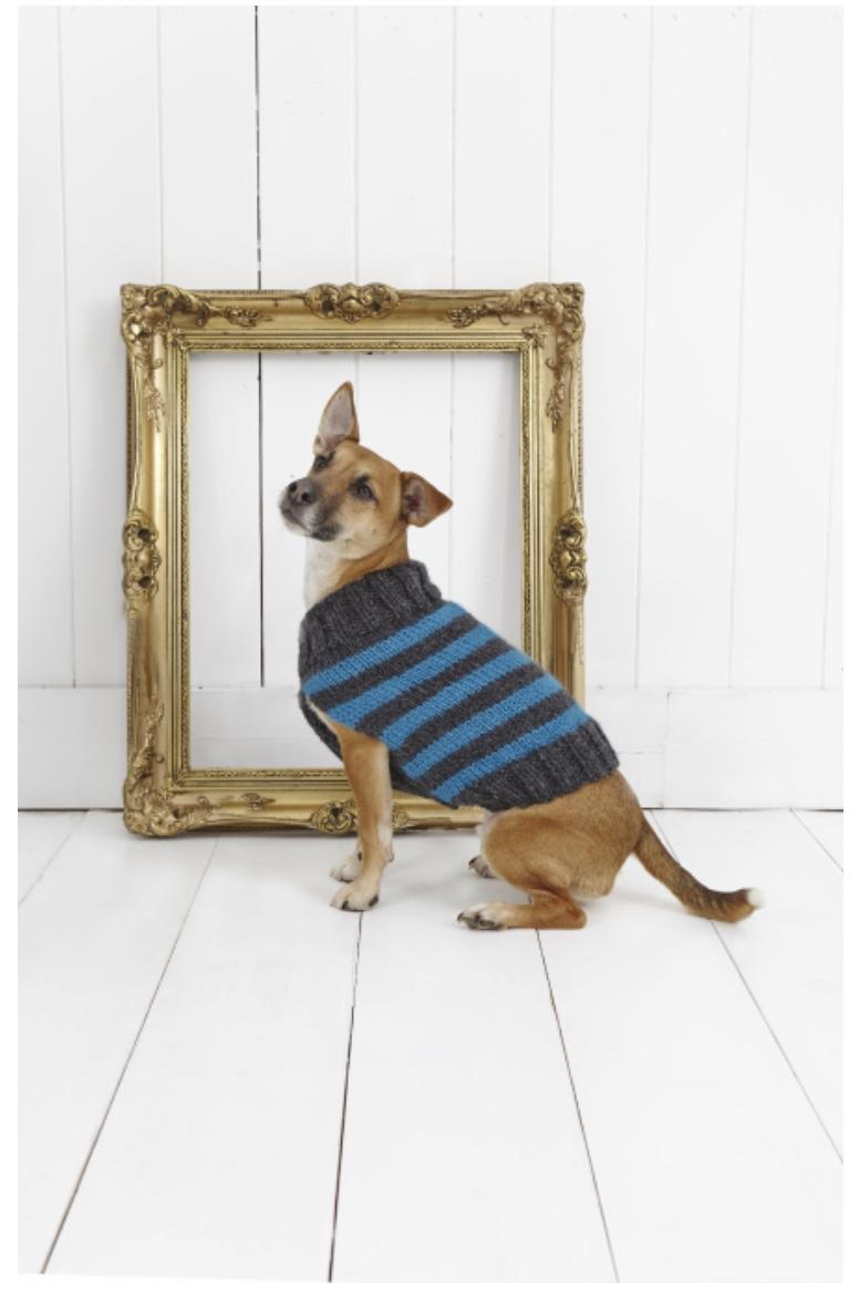 Easy Knit Chunky Striped Dog Coat Stylecraft 9179 ...